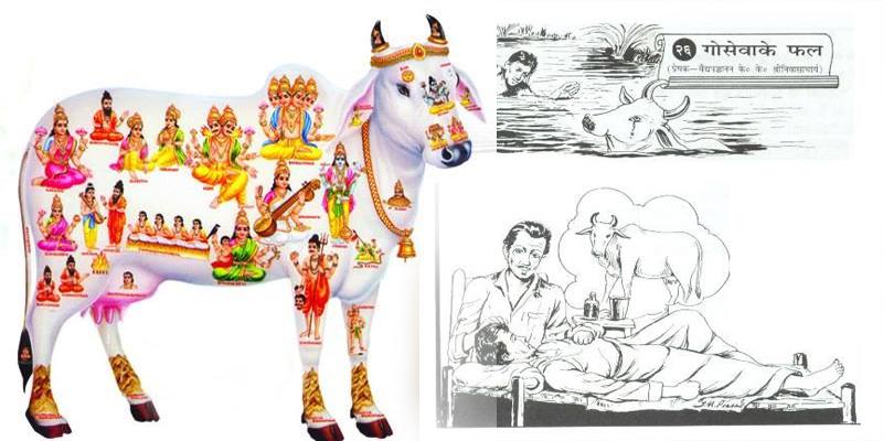 गोसेवा के चमत्कार