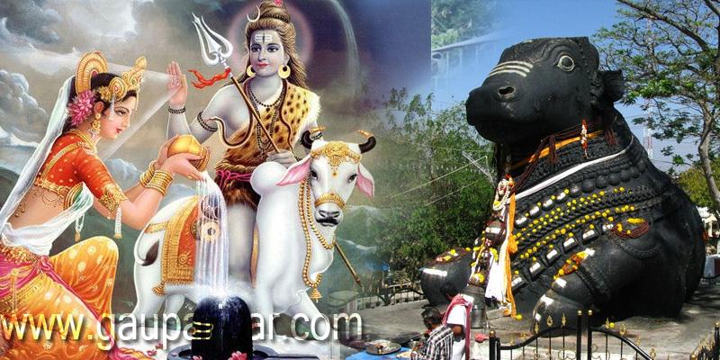 शिव का वाहन - धर्म का अवतार नंदी