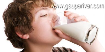 कौन सा दूध